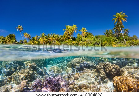 Tropical island above and bellow water #410904826