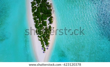 Tropical island and white sand beach and green trees aerial  in Maldives #623120378