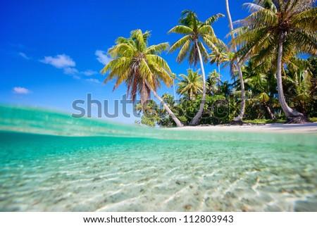 Tropical island at Tikehau atoll in French Polynesia