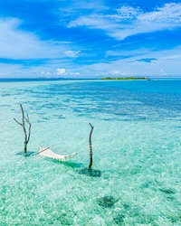 Tropical island coast as summer landscape with swing or hammock and amazing calm sea lagoon for beach banner. Wonderful beach scene vacation and summer holiday, luxury mood, aerial beach shore