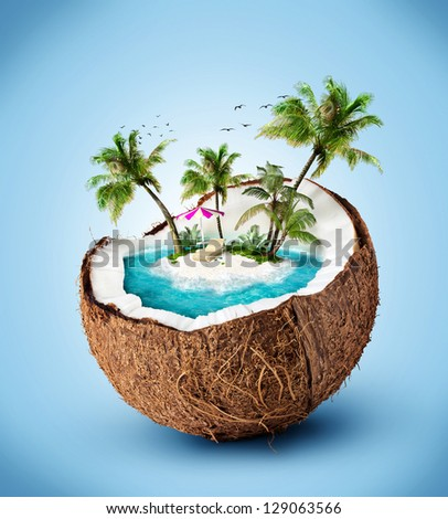 tropical island in coconut. Traveling, vacation