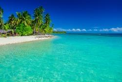 Tropical island in Fiji, palm trees and the sandy beach, Plantation Island