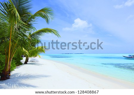 tropical island palm sea and sky