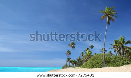 Tropical island paradise with idyllic white sand beach, turquoise waters, blue sky and graceful palm trees