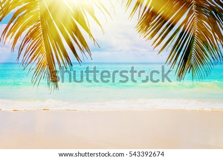 Tropical island. The Seychelles.Toned image