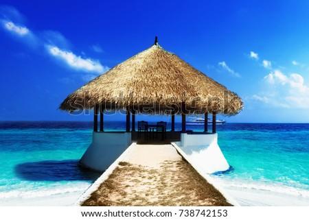 Tropical island. Tropical holiday #738742153