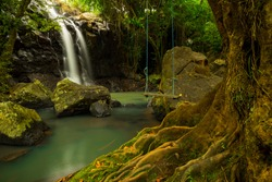 Tropical landscape. Beautiful hidden waterfall in rainforest. Tree with a swing. Adventure concept. Nature background. Slow shutter speed, motion photography. Sing Sing Angin waterfall Bali, Indonesia