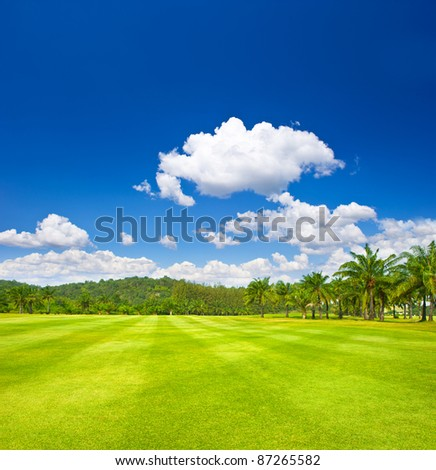 tropical landscape. golf field with palm trees over cloudy blue sky