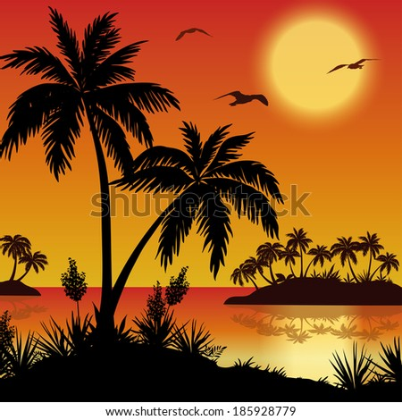 tropical landscape sea islands with palm trees flowers sun and