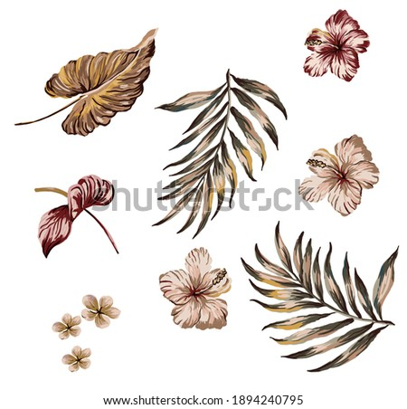 Tropical leaves and flowers set isolated for repeat seamless pattern fabric texture, with exotic hibiscus, anthurium, plumeria, palm leafs on white background.