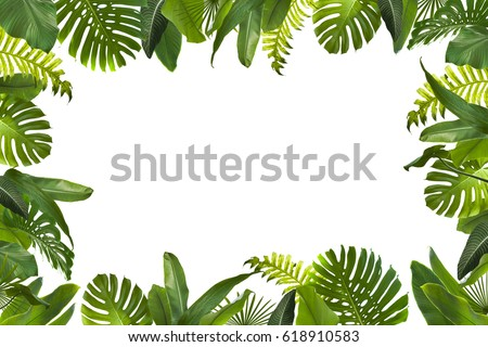 Tropical Leaves Background #618910583