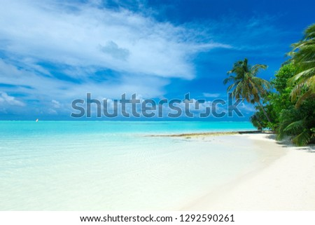 tropical Maldives island with white sandy beach and sea #1292590261