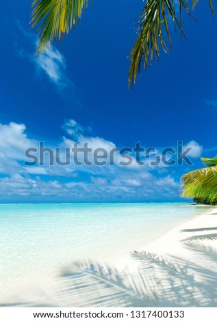 tropical Maldives island with white sandy beach and sea #1317400133
