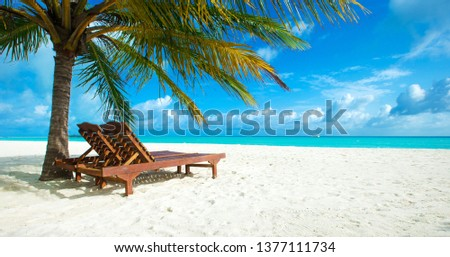 tropical Maldives island with white sandy beach and sea #1377111734