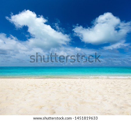 tropical Maldives island with white sandy beach and sea #1451819633