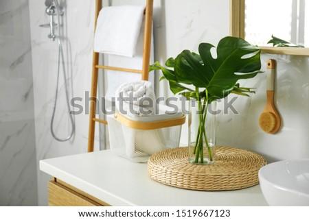 Tropical monstera leaves in stylish bathroom interior
