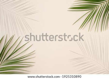 Tropical palm leafs and shadows over pastel beige color background. Minimal summer conceptwith palm tree leafs and sunlight shadows.