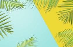 Tropical palm leaves frame on yellow and light blue background. Minimal nature. Summer Styled.  Flat lay.  Image is approximately 5500 x 3600 pixels in size.