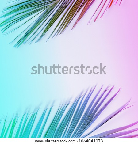 Tropical palm leaves in vibrant gradient neon colors. Minimal summer background. - Shutterstock ID 1064041073