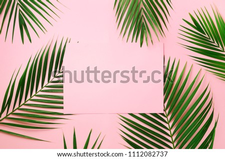 Tropical palm leaves on pastel pink background with paper card note. Minimal summer concept. Creative layout. Top view, flat lay. Green leaf on punchy pastel paper. #1112082737
