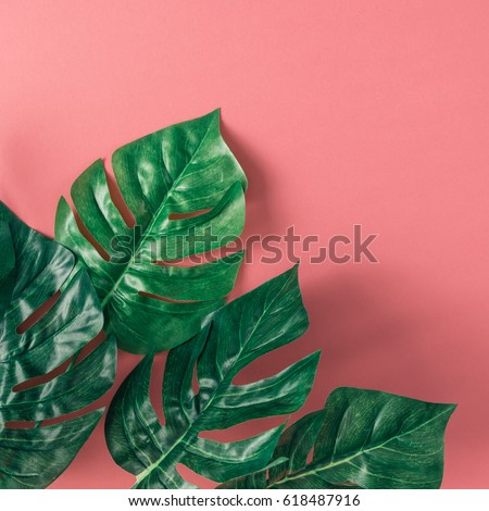 Tropical palm leaves on pink background. Minimal nature summer concept. Flat lay. #618487916