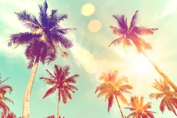 Tropical palm tree with colorful bokeh sun light on sunset sky cloud abstract background.Summer vacation and nature travel adventure concept.  Vintage tone filter effect color style.