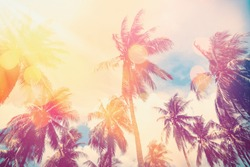 Tropical palm tree with colorful bokeh sun light on sunset sky cloud abstract background. Summer vacation and nature travel adventure concept. Vintage tone filter effect color style.
