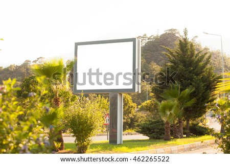 Tropical palm trees and a billboard in the late afternoon sun