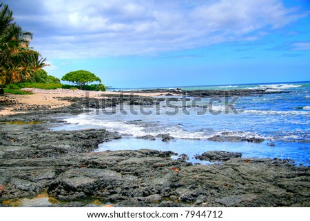 Tropical palms and lava rocks along a bright turquoise ocean