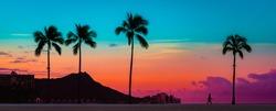 Tropical Paradie Art Sunrise in Waikiki Hawaii