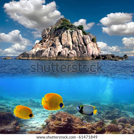 Tropical paradise and corals on a reef top, Koh Tao island, Thailand - stock photo