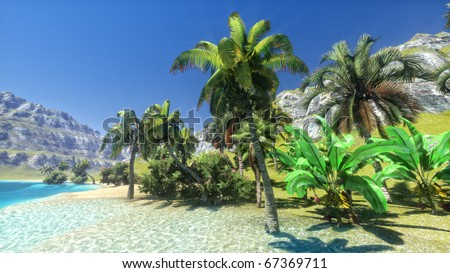 Tropical paradise beach