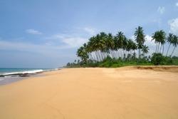 Tropical paradise  beach. Sri Lanka