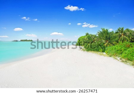 Tropical paradise in Maldives with white beach and turquoise sea from above