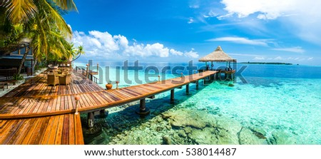tropical paradise landscape in...