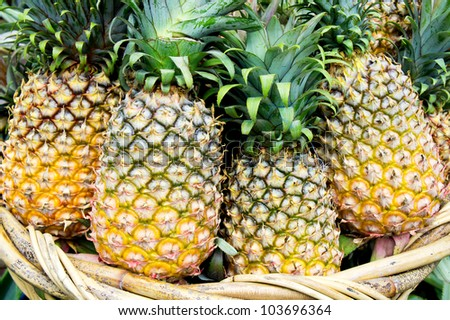 Tropical pineapples fruits in basket