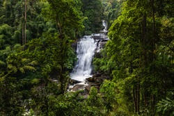 Tropical rain forest landscape with beautiful waterfall, rocks
