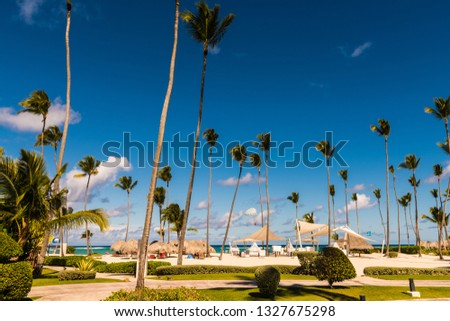 tropical resort landscape #1327675298