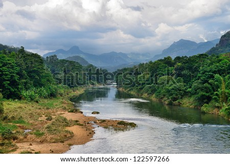 Tropical river. The river flowing in the country of Sri Lanka
