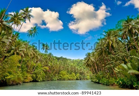 Tropical river with palm trees on both shores