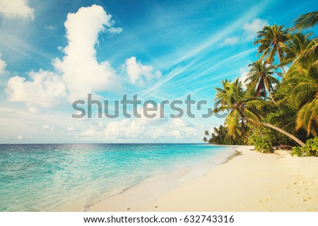 tropical sand beach #632743316