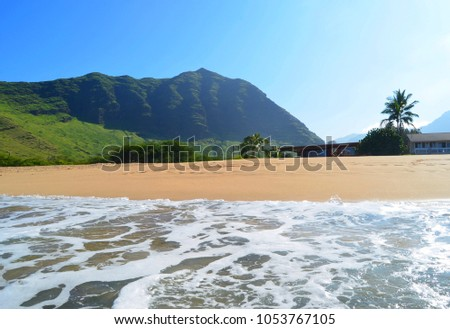 Tropical sandy beach, palm trees, azure sea, Oahu, Hawaii, Makaha beach in the morning, wonderful beach, the best in Hawaii