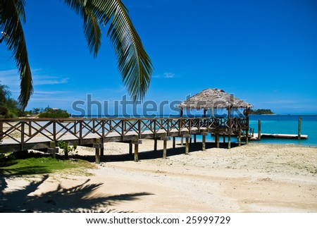 Tropical sandy beach with palm trees and pier. Holiday, relaxation and rest. Fiji