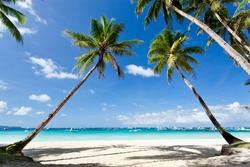 Tropical scene, Boracay