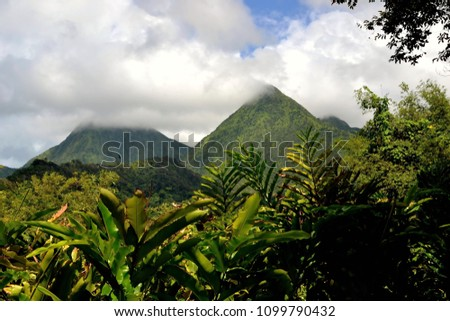 Tropical scene of Martinique mountains, Volcano Mount Pelee in the background, Lesser Antilles, Caribbean, rain forest in the foreground Foto stock ©