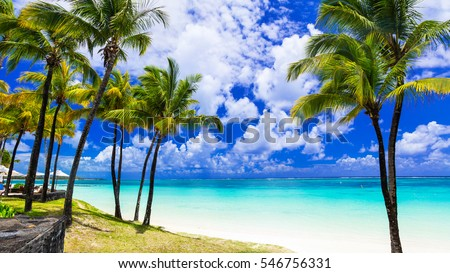 Tropical scenery. Beautiful palm beach Belle Mare with turquoise waters, Mauritius island