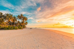 Tropical sea beach colorful sky sand sunset light. Relaxation landscape, horizon with palm trees and calm sea. Romantic couple seaside beach, shore coast nature. Gorgeous landscape, stunning sky view