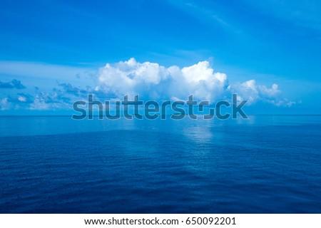 tropical sea under the blue sky #650092201