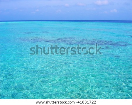 Tropical sea water background