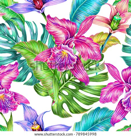 Tropical seamless pattern background with exotic flowers, jungle leaves, monstera leaf, pink orchids. Botanical colorful orchid flower illustration